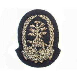 SEYCHELLES POLICE CAP BADGE